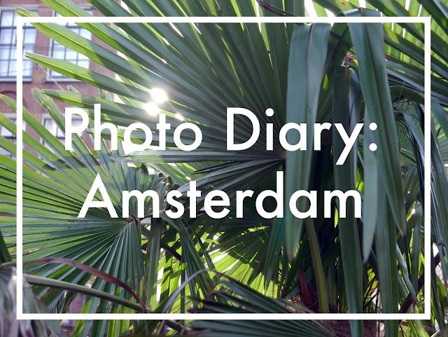 amsterdam, plants