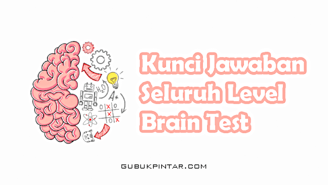 Kunci Jawaban Brain Test