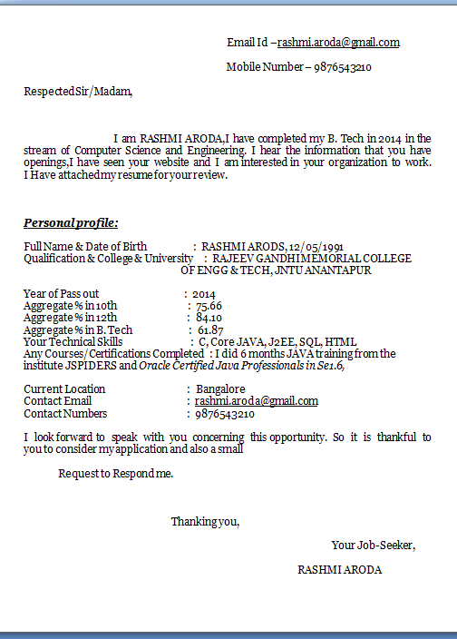 Sample Template Example of Excellent Professional Job Application ...