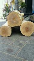 memilih jenis kayu yang berkualitas sebagai bahan baku meubel
