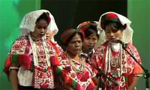 Danza Tsacam son