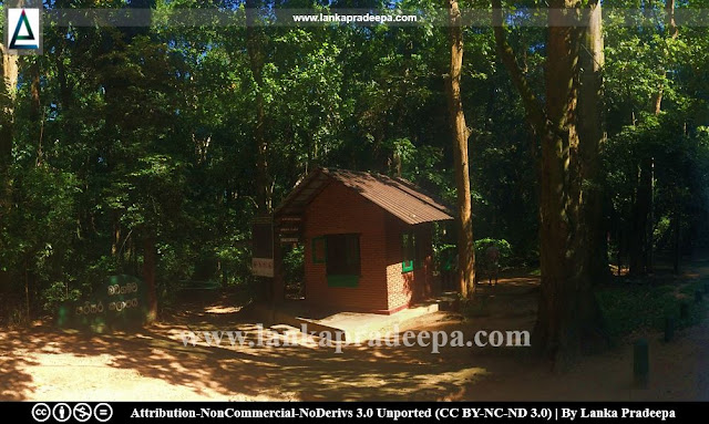 Badagamuwa Conservation Forest