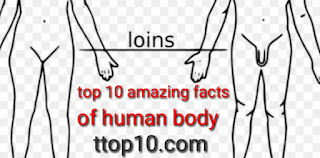 10 amazing facts about human body  10 incredible human body facts  strange but true facts about humans  amazing facts about human body with pictures  interesting facts about human behavior  funny biology facts  interesting facts about human brain  10 amazing facts about human body with pictures