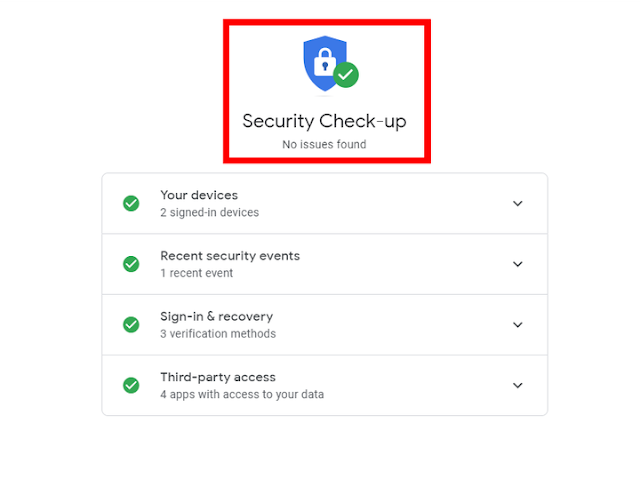 security chek up google