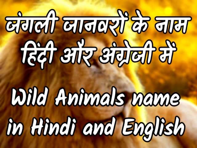 Wild animals name in Hindi and English