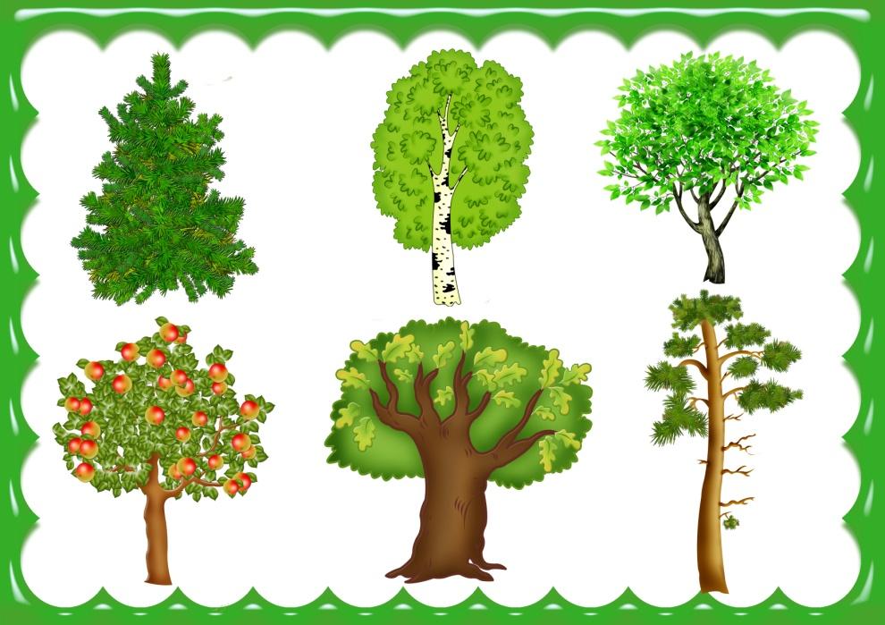 картинки с деревьями для доу вкусный борщ