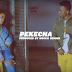 Video | Centano – Pekecha (Official Video) | Download Mp4