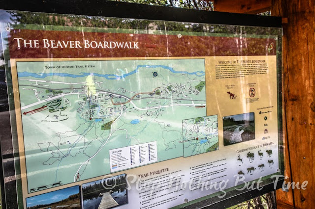 Hiking the Happy Creek Trail in Hinton, Alberta. Trailhead begins at the Beaver Boardwalk, Canada's longest freshwater boardwalk.