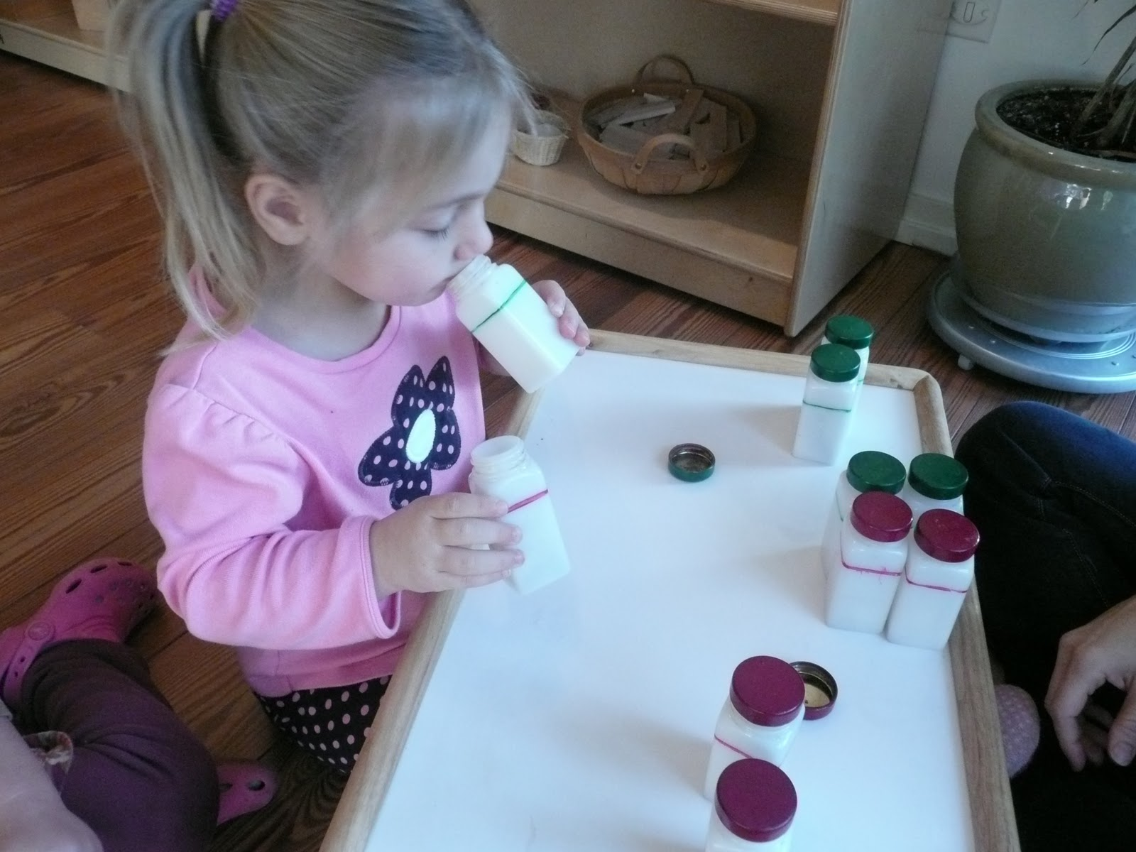 Montessori Teachings: Sensorial Education and the Smelling Bottles