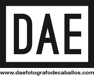 Logo DAE Fotografo de caballos
