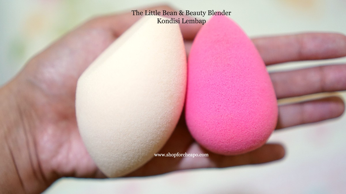Rosé All Day The Little Bean Review vs Beauty Blender