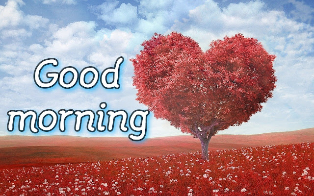 Good morning love hd images