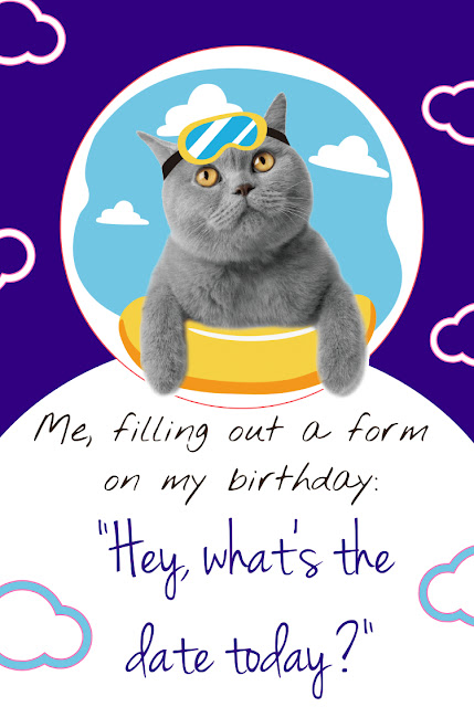 happy birthday cat funny
