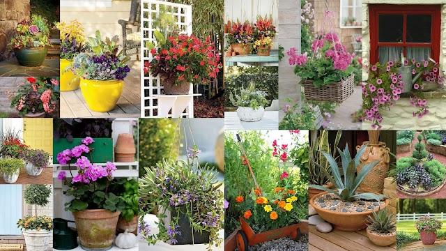 Τρόποι διαμόρφωσης εξωτερικών χώρων με ανοιξιάτικα - καλοκαιρινά φυτά σε γλάστρες