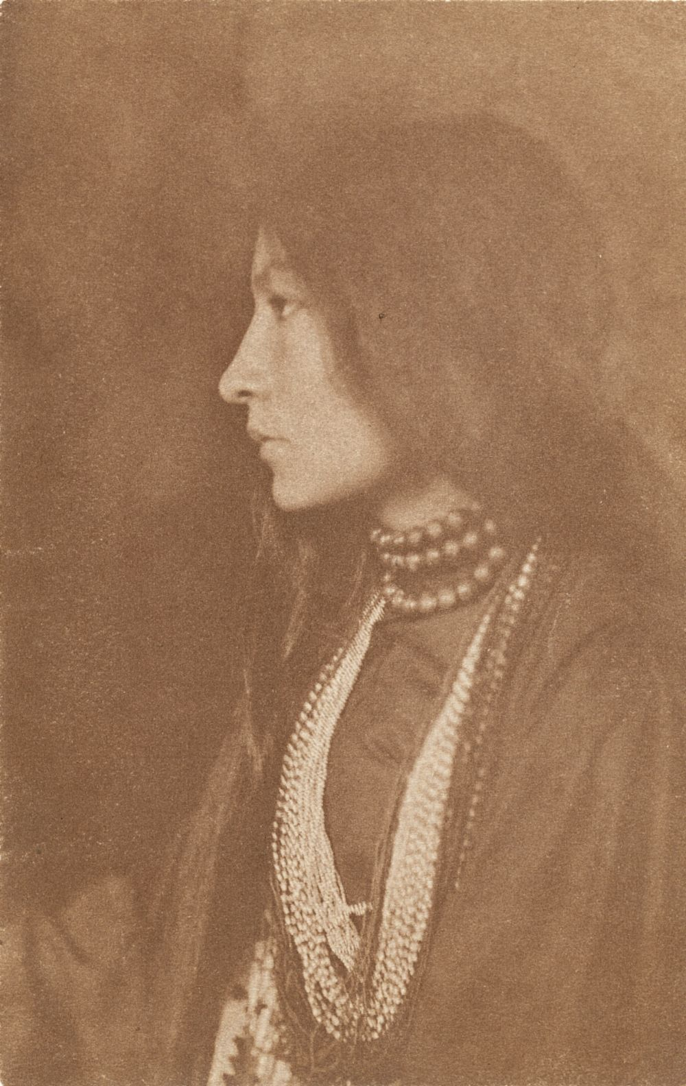 10 Breathtaking Portraits of Sioux Indian and Activist ...Zitkala Sa