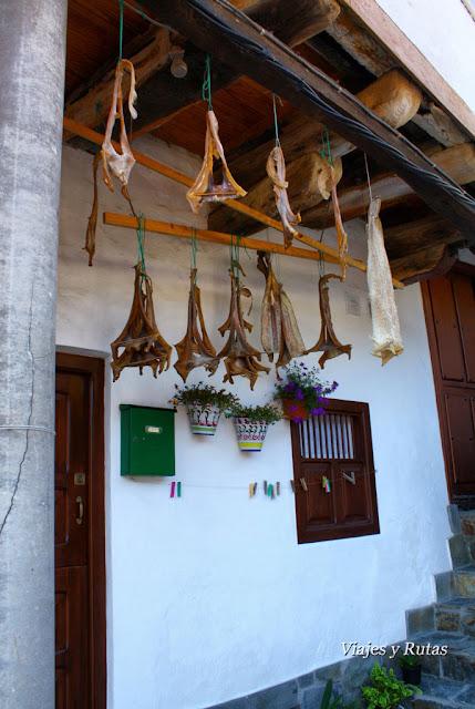 Curadillo de Cudillero, Asturias