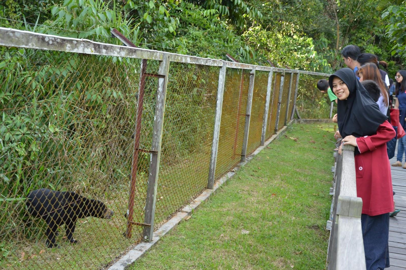 Wisata Enclosure Beruang Madu