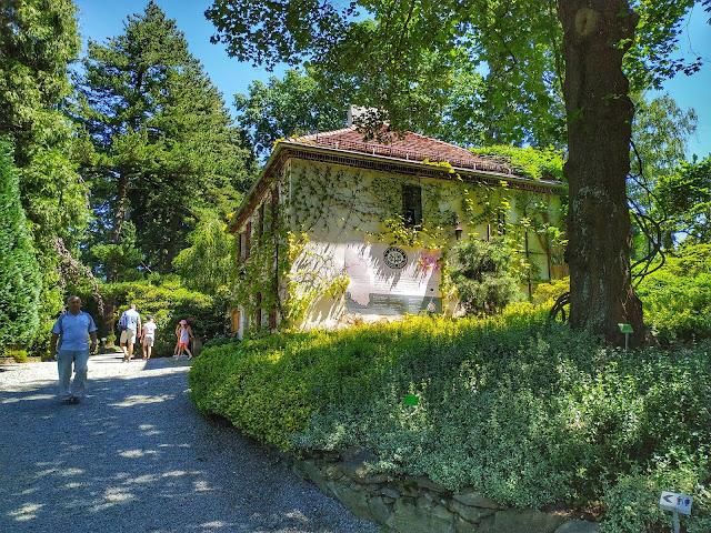 Arboretum Wojsławice jest doskonale znane miłośnikom roślin i ogrodów