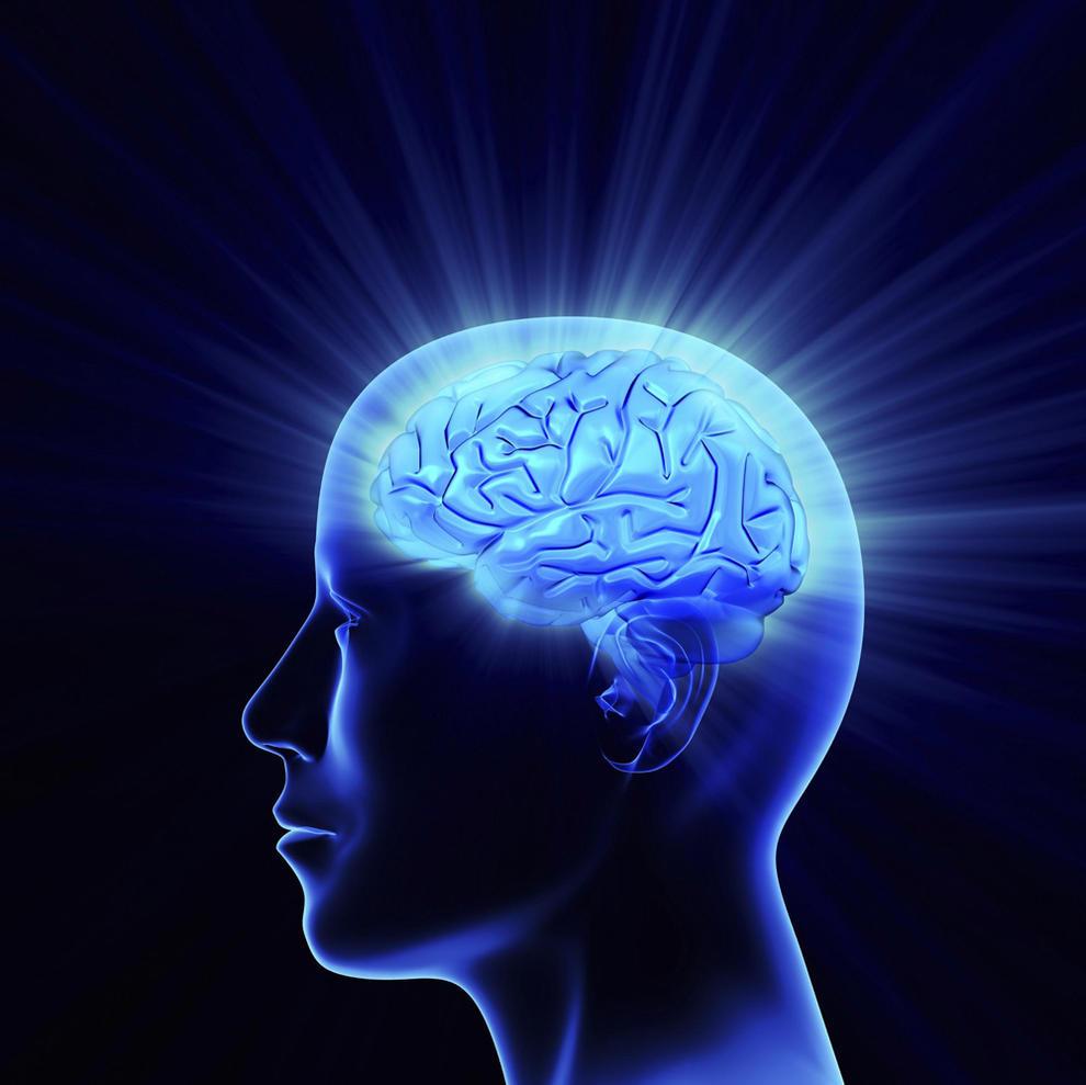 Nuestro Cerebro Elimina Toxinas Durante El Sueño