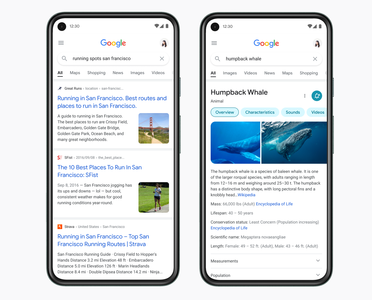 Google redesigns Mobile Search to make reading easier and allow users to better focus on information / Digital World