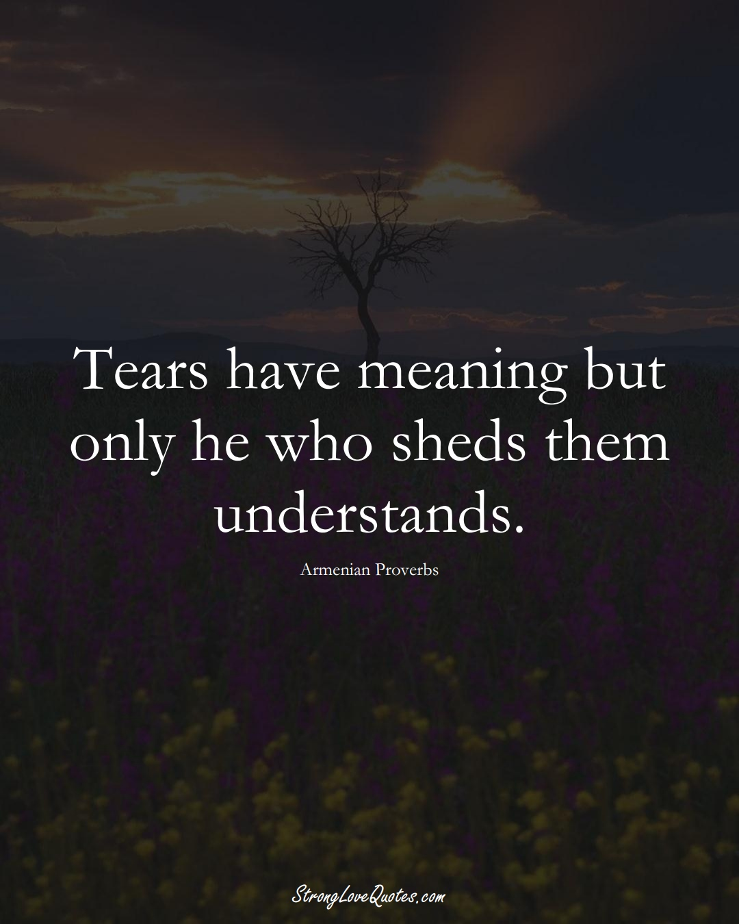 Tears have meaning but only he who sheds them understands. (Armenian Sayings);  #AsianSayings