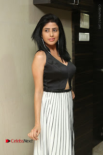 Actress Pragya Stills Beautiful Long Dress at RGV Shiva to Vangaveeti Event  0041.JPG
