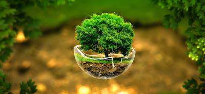 Materi Mata Kuliah Pengetahuan Lingkungan Telkom University Lengkap - Download PDF