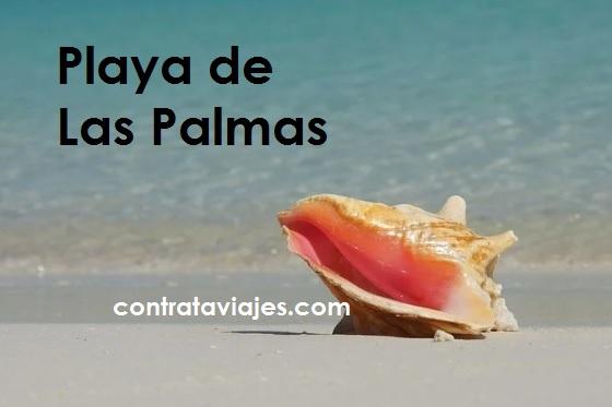 Playa de las Palmas