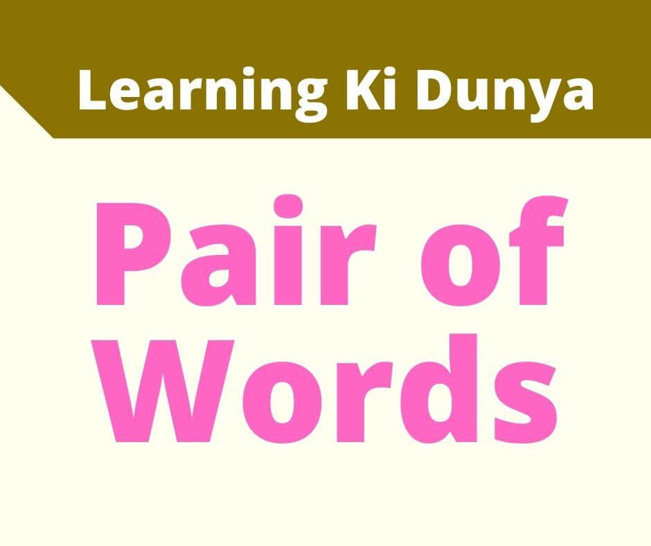 Pair of words | Pair of words pdf | Pair of words with sentences | Learning ki dunya