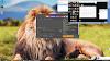 Vivo Y20-Y20i-Y20s - PD2034F-V2027-V2029 Remove Password - Gmail