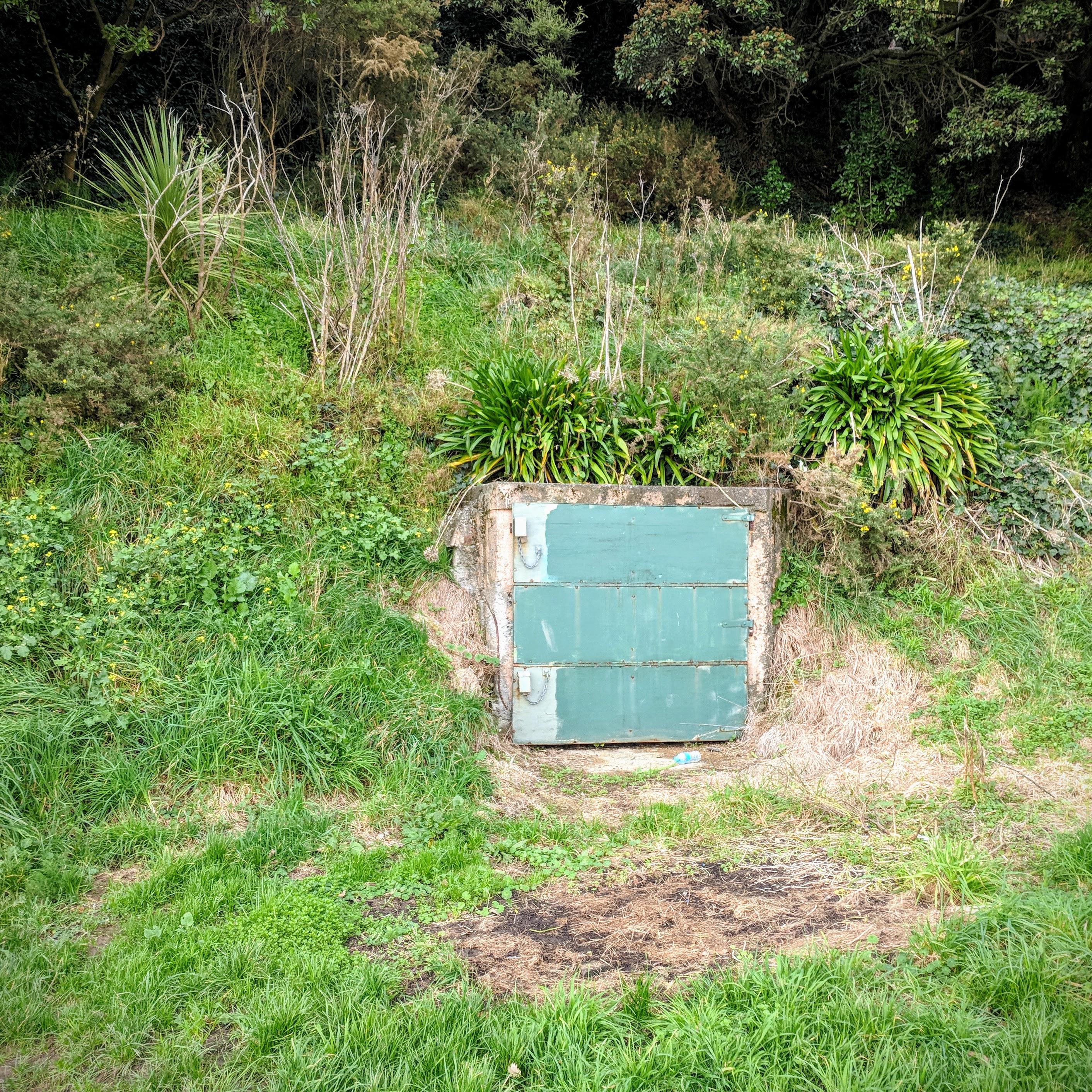 A door in a grass bank