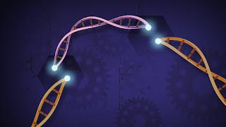Quand CRISPR-Cas9 s'invite dans le jeu vidéo
