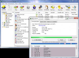 IDM 6.21 Build 16 full crack