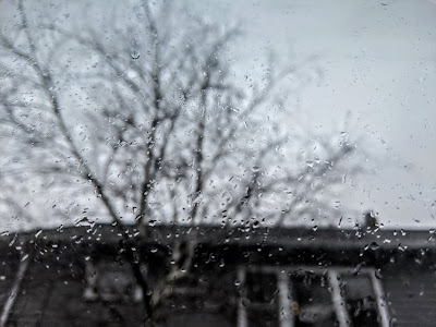 A window pane with rain on it and beyond the window, a barren tree and gray house.