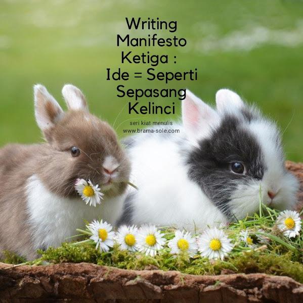 Writing Manifesto Ketiga : Ide = Kelinci