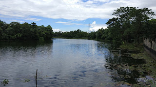 Rangauti Resort Lake