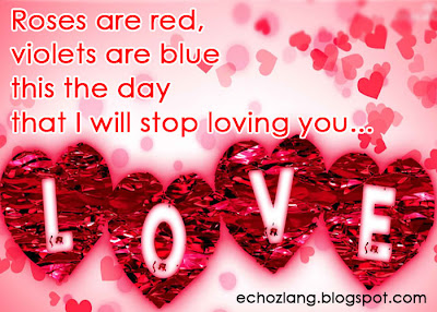 Roses are red, violets are blue, this the day that i will stop loving you