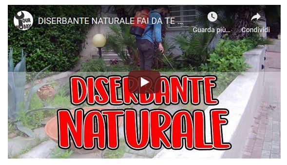 diserbante naturale-giardino-manutenzione