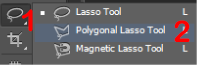 Choose Polygonal Lasso Tool in Photoshop.