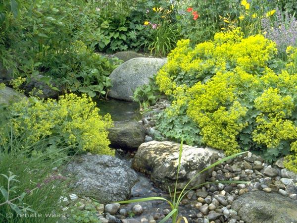 Bachlauf und Gartenteich - Gartengestaltung mit Wasser im Garten