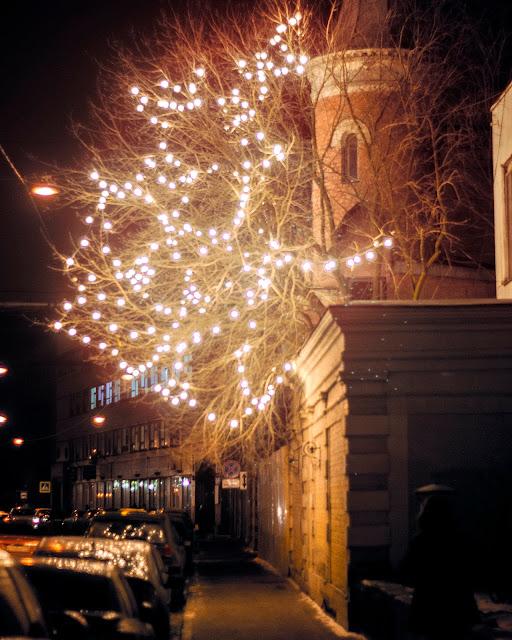 Севкабель ламповое дерево лампочка ночь улица арт пространство