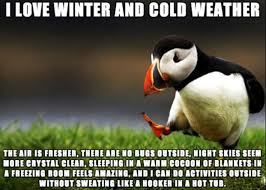 93 Funny Colder Than Sayings Quotes And Memes Best Wishes And