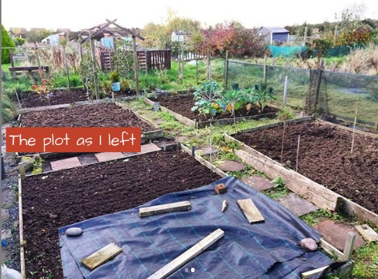 plot as I left - A Stubborn Optimist - an ecotherapy blog - C.Gault 2019