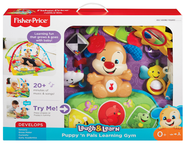 Puppy 'n pals learning gym