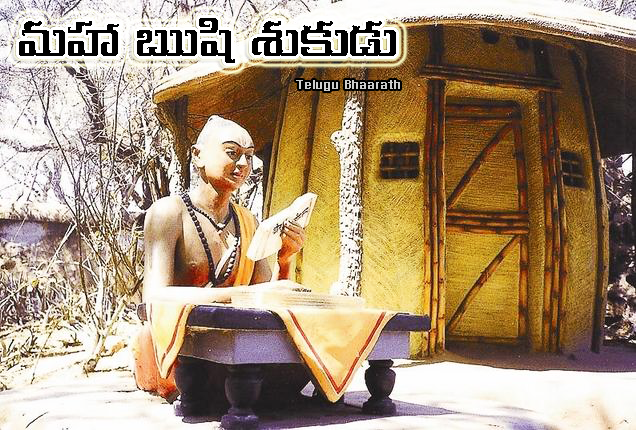 """మహా ఋషి """"శుకుడు"""" - Rishi Shakunudu"""