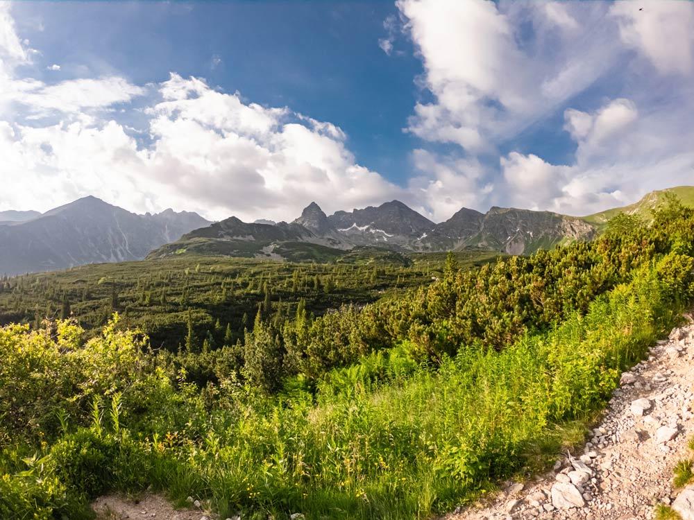 Panorama na Halę Gąsiennicową