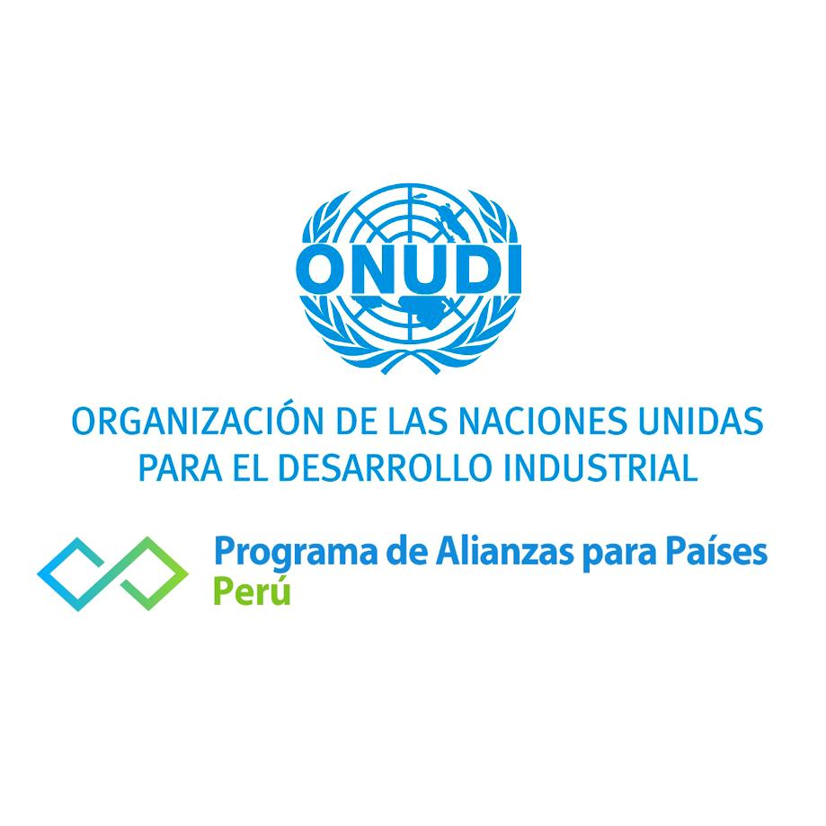 Logo ONUDI - Auspiciador III Congreso Internacional de la Industria Plástica, Lima, Perú, abril 2020