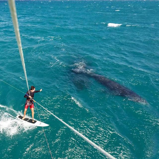 matteo_casadio_windsurf