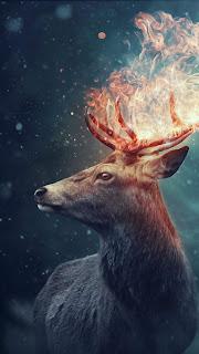 The Deer Mobile HD Wallpaper