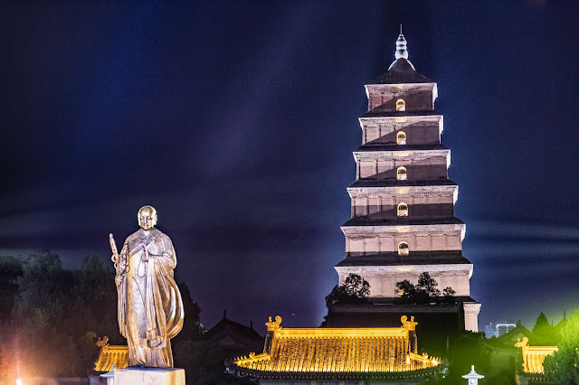 10. Pagoda Ganso Salvaje